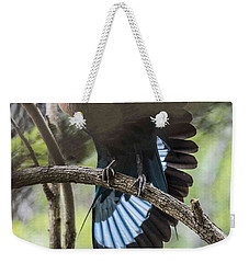 Blue Bellied Roller Stretching His Flight Feathers Weekender Tote Bag