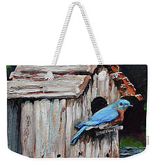 Weekender Tote Bag featuring the painting Blue Bird On Lake Odom by Jan Dappen
