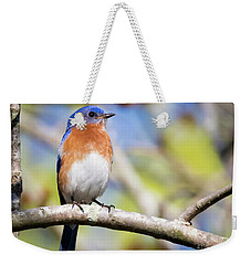 Blue Bird Weekender Tote Bag by Ricky L Jones