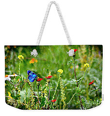 Weekender Tote Bag featuring the photograph Blue Butterfly In Meadow by John  Kolenberg