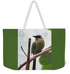 Blue-crowned Motmot Oil Weekender Tote Bag