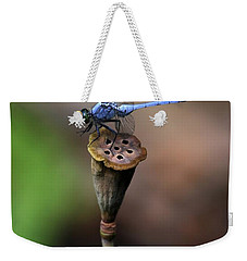 Blue Dragonfly Dancer Weekender Tote Bag