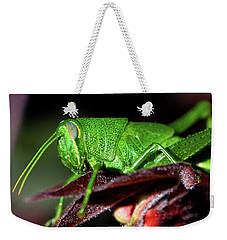 Blue Eyed Green Grasshopper 001 Weekender Tote Bag