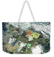 Weekender Tote Bag featuring the photograph Blue Fish by Carol Lynn Coronios