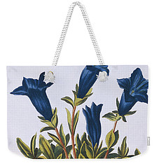 Blue Gentian  Trumpet Flower  Weekender Tote Bag by Pierre-Joseph Buchoz