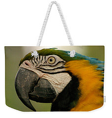Blue Gold Macaw South America Weekender Tote Bag by Ralph A  Ledergerber-Photography