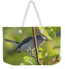 Blue Gray Gnatcatcher Weekender Tote Bag