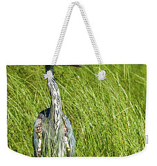 Weekender Tote Bag featuring the photograph Blue Heron In A Marsh by Paul Freidlund