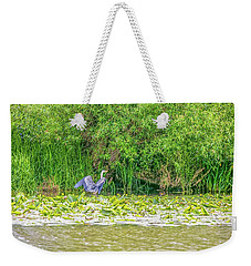 Weekender Tote Bag featuring the photograph Blue Heron Landing May 2016.  by Leif Sohlman