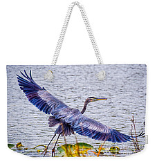 Blue Heron  Take Off  Weekender Tote Bag
