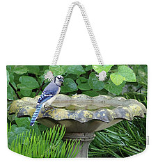 Weekender Tote Bag featuring the photograph Blue Jay At The Birdbath II by Richard Rizzo