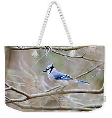 Weekender Tote Bag featuring the photograph Blue Jay by George Randy Bass
