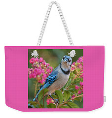 Blue Jay In Crepe Myrtle Weekender Tote Bag
