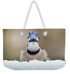 Blue Jay In Snow Weekender Tote Bag