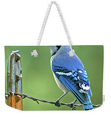 Blue Jay On The Fence Weekender Tote Bag