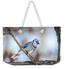 Weekender Tote Bag featuring the photograph Singing My Song by Steven Santamour