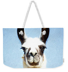 Weekender Tote Bag featuring the photograph Blue Llama by Sue Collura
