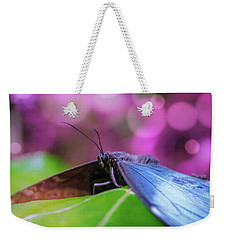 Blue Morpho  Butterfly 2 Weekender Tote Bag