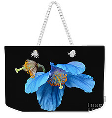 Blue Poppies Weekender Tote Bag by Cindy Manero