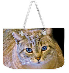 Strikingly Handsome Weekender Tote Bag by Barbara S Nickerson