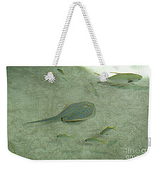 Weekender Tote Bag featuring the photograph Blue Spotted Ray And Friends by Carol Lynn Coronios