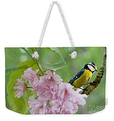 Blue Tit On Cherry Blossom Weekender Tote Bag