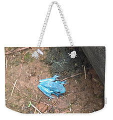 Weekender Tote Bag featuring the photograph Blue Tree Frog by Stacy C Bottoms