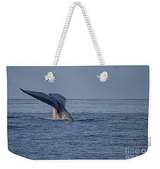 Weekender Tote Bag featuring the photograph Blue Whale Tail by Suzanne Luft