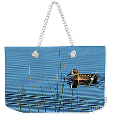 Weekender Tote Bag featuring the photograph Blue Winged Teal by Ann E Robson