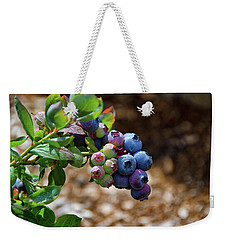 Blueberries Out On A Limb Weekender Tote Bag by Debra Baldwin