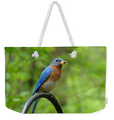 Bluebird Catches Worm Weekender Tote Bag by Rand Herron