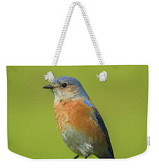 Bluebird Digital Art Weekender Tote Bag