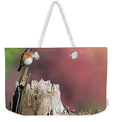 Bluebird Fall Perch Weekender Tote Bag