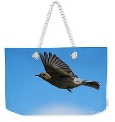 Bluebird Glide Weekender Tote Bag by Mike Dawson