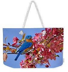Bluebird In Apple Blossoms Weekender Tote Bag