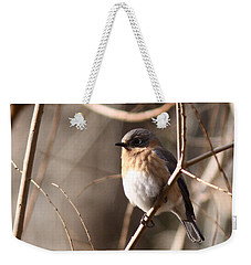 Bluebird In Beige Weekender Tote Bag