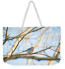 Bluebird In Tree Weekender Tote Bag