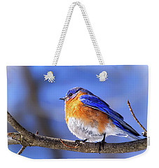 Bluebird In Winter Weekender Tote Bag