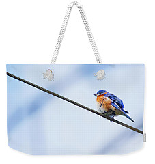 Weekender Tote Bag featuring the photograph Bluebird Of Happiness by Linda Unger