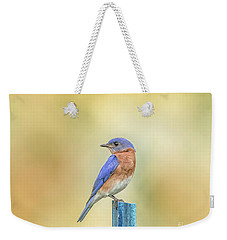 Weekender Tote Bag featuring the photograph Bluebird On Blue Stick by Robert Frederick