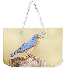 Weekender Tote Bag featuring the photograph Bluebird On Fence Post by Robert Frederick