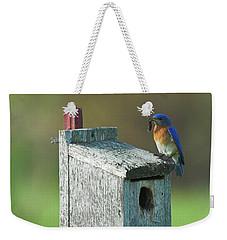 Weekender Tote Bag featuring the photograph Bluebird by Steve Stuller