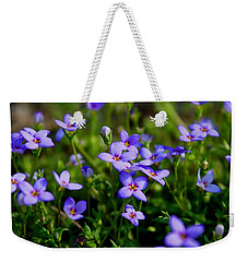 Weekender Tote Bag featuring the photograph Bluets by Kathryn Meyer