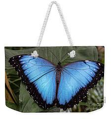 Blue Morph Weekender Tote Bag by Kathy McClure