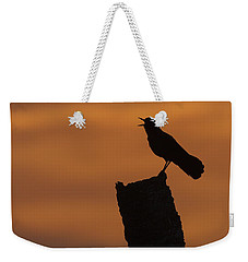 Boat-tailed Grackle At Sunset Weekender Tote Bag