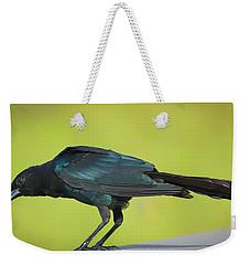 Boat-tailed Grackle Male Weekender Tote Bag