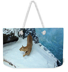 Weekender Tote Bag featuring the digital art Bobcat On A Mountain Ledge by Chris Flees