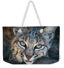 Bobcat Stare Weekender Tote Bag by Elaine Malott