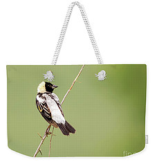 Bobolink Looking At You Weekender Tote Bag