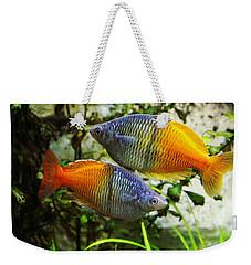 Boeseman's Rainbowfish Weekender Tote Bag